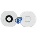 iPad Air home button white