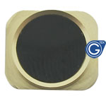 iPhone 5 Black home button with gold chrome ring