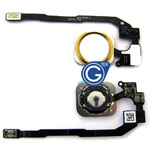 iPhone 5S, SE Home button with ring and flex complete in Gold